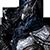 ash-thorn的头像