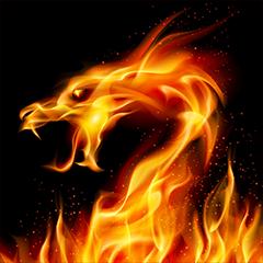 Liangli523